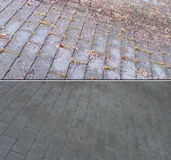Residential Roof Cleaning and Sealing
