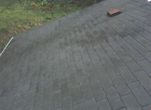 Roof Cleaned and Sealed