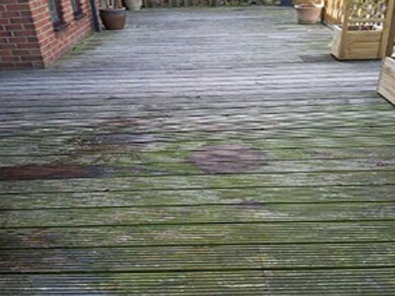 Discoloured Decking Covered in Green Moss
