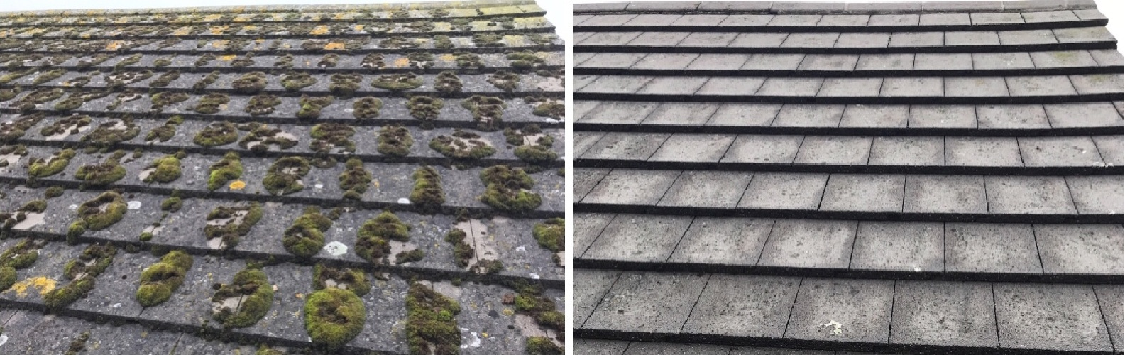 roof-paint-sealing